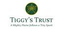 Tiggy Hancock Trust CLG