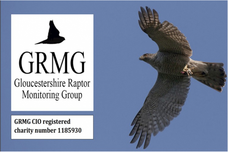 Gloucestershire Raptor Monitoring Group CIO