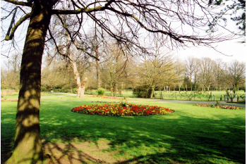 Support Valentines Park