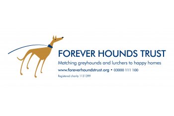 Donate to Forever Hounds Trust